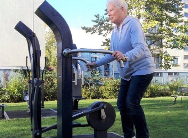 Denfit Gym for seniors web